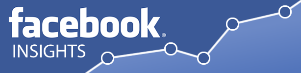 facebook insights consulting